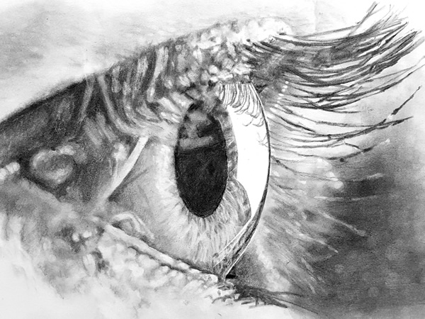 Eye close up pencil drawing